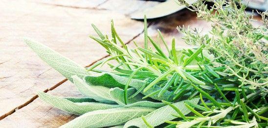 Thymian, Minze und Rosmarin Blätter
