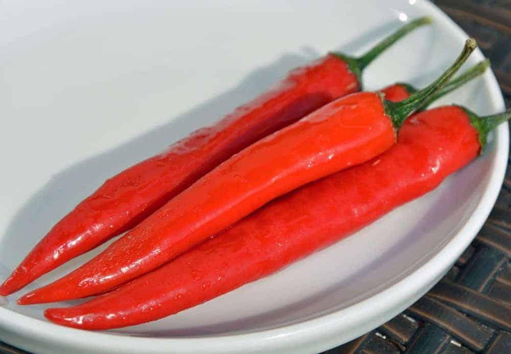 tomaten chili salsa rezept vom chefkoch fritz grundmann. Black Bedroom Furniture Sets. Home Design Ideas
